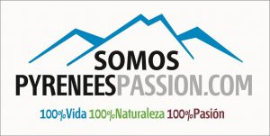 Pyrenees passion-A