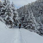Excursiò amb raquetes a la Vall de Siarb