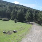 la culla sant joan de l'erm El massis de l'orri Rutas en 4x4 Pallars Sobira