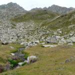 estanys mainera7a Etapa Estanys de la vall d'Assua