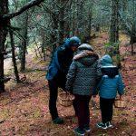 Tresors del Parc Natural per les Comes de Rubió-Massís de l'Orri